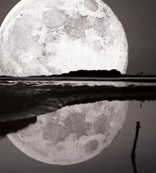 blog-temp-moon
